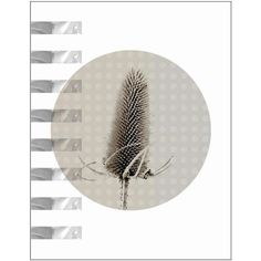Botanical Art Print Thistle Floral Black Gray Modern Minimalist White... (44 ILS) ❤ liked on Polyvore featuring home, home decor, wall art, photo poster, black and white wall art, white panels, textured wall art and black white poster