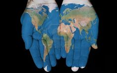 Our organic ingredients come from all over the world.