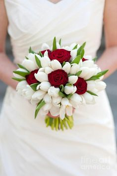 Lovely Posey Of Pure White Tulips & Scarlet Roses~~