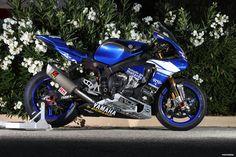 Yamaha R1 / GMT94 / Bol d or 2016