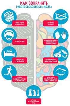 9 очевидных способов помочь работе мозга.