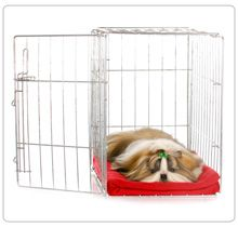 Dogs are den animals which make's your puppy's crate a great training tool. Learn more by clicking the image.