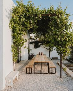 It only took a couple of years for the grapes to cover the pergola. My first project Photo by .… Pergola Design Ideas that are quite interesting and suitable for outdoor areas in your home. Pergola Patio, Backyard Patio, Backyard Landscaping, Metal Pergola, Pergola Plans, Patio Awnings, Pergola Carport, Small Pergola, Modern Backyard