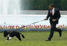 A rumor states that President Obama pays his dog trainer $102,000 a year in tax-payer money. See link for detailed analysis.