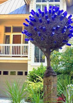 Bottle Tree Wow That S A Lot Bottles Trees And Shrubs Yards