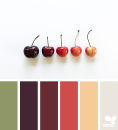 { fresh hues } - https://www.design-seeds.com/edible-hues/culinary-color/fresh-hues-21