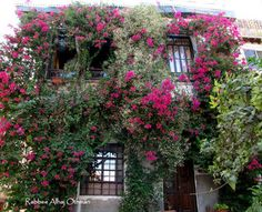 Old House in the road of Old Damascus