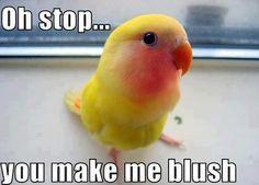 STOP IT, you make me blush....