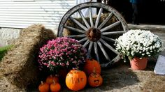 1000 Images About Wagon Wheels On Pinterest Wagon