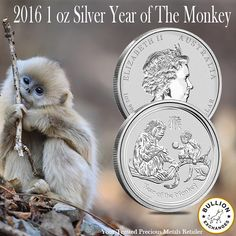 Purchase the party animal of the Lunar Series on the Chinese calendar! The 2016 1 oz Silver Year of The Monkey BU (In Capsule) is product by the Australian Pert Mint and is available in brilliant uncirculated condition through Bullion Exchanges at www.bullionexchanges.com. Each coin has been struck in .999  pure silver and is backed by the Australian Government adding to its invest appeal. Enhance your silver bullion collection by adding the 2016 1 oz Silver Year of The Monkey BU (In…