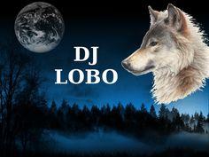 """""""Lobo en la Oscuridad"""""""