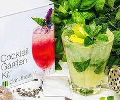 Cocktail Garden Kit - http://tiwib.co/cocktail-garden-kit/ #AlcoholicGear