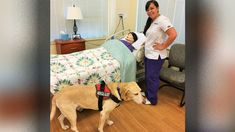 Nothing is impossible for this ECPI University nursing student and her service dog, Oz. Together, they work through the Bachelor to BSN program in Orlando.