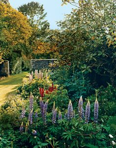 The formal flower beds outside the living room are home to brightly  colored phlox and delphinium.   Sittings Editor: Miranda Brooks.