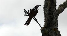 Metalbird makes native bird silhouettes from metal that hammer into trees . Proudly made in NZ Bird Silhouette, Door Ideas, Shape Design, Large Art, Auckland, Bird Art, Laser Cutting, Metal Art, Silhouettes