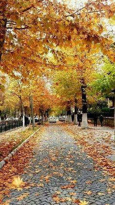 Malatya.Turkey.  Facebook