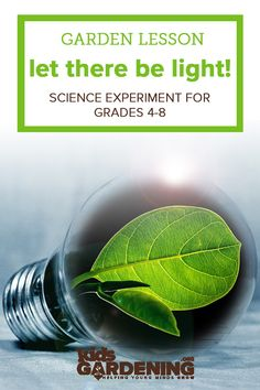 Garden science lesson for students to test variations in light on plant growth. Science Lessons, Science Experiments, School Gardens, Thing 1, Plant Growth, Indoor Gardening, Fun Learning, Lesson Plans, Curriculum
