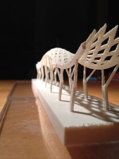 3D Printing by NZ Architecture Student