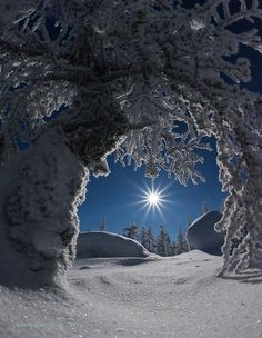 This Pin was discovered by Rosemarie Mazzella. Discover (and save!) your own Pins on Pinterest. | See more about winter scenes, winter wonderland and winter.