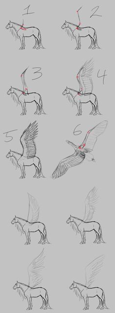Pegasus Wing Tutorial by WSTopDeck on @DeviantArt