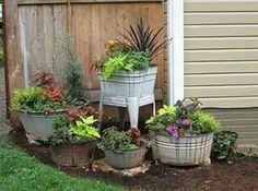 Future garden !