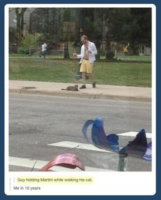 Guy holding martini walking his cat. So much yes.