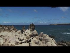 Breathing Space: Hawaii's Natural Beauty - Super Soul Sunday