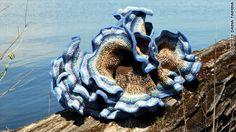 Geek Out!: Crochet sculptures teach higher math – SciTechBlog - CNN.com Blogs