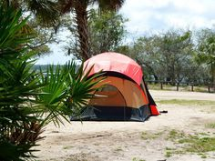 Camping is different here. Floridians need bigger, airier tents, and we always worry about sudden changes in the weather. Our guide to essential gear for tent camping in Florida. Camping Supply List, Camping List, Camping Games, Camping Equipment, Family Camping, Tent Camping, Camping Gear, Outdoor Camping, Outdoor Gear