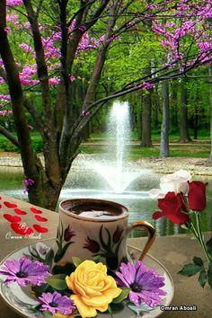 Good Morning Coffee, Good Morning World, Good Morning Picture, Good Morning Love, Good Morning Greetings, Morning Pictures, Good Morning Images, Beautiful Roses, Beautiful Images