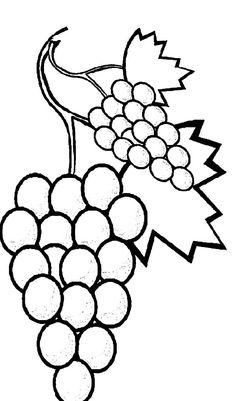 Favorite Fruits Sweet Grapes Coloring Pages Farm Animal Coloring Pages, Preschool Coloring Pages, Coloring Book Pages, Kids Coloring, Colouring, Arte Do Galo, Deco Fruit, Vegetable Coloring Pages, Learn To Sketch