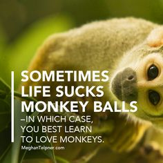 Quote | Learning To Love Monkeys