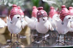 Tweet Tweet!! Festive birds with wooly hats :)