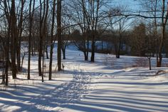 Winters Walk at Maine Audubon in Falmouth, ME