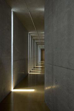 Slit House by EASTERN Design Office, in Shiga, Japan. Photographs by Koichi Torimrua.