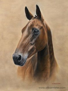 ABBY, pastel on pastel card by Ali Bannister. Commissioned as a 60th birthday present. For limited edition prints and information on commissions see: www.alibannister.com