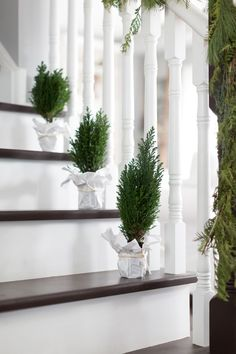 Christmas Staircase decoration ideas are here. From staircase to railings to below the staircase to Christmas Entryway decor ideas are here. Christmas Stairs Decorations, Christmas Entryway, Cozy Christmas, Beautiful Christmas, White Christmas, Christmas Ornament, Stair Decor, Entryway Decor, Staircase Decoration