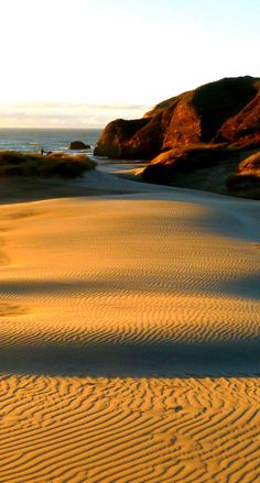 Sand dunes at sunset in archway island Wharariki beach at Puponga, Golden Bay, NZ