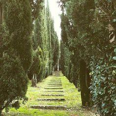 """La Foce"" Garden at Montepulciano #tuscany . We  Tuscany #wonderful #art #love #instamood #instacool #instalove #instalike #igers #igersitalia #italia #beautiful #italy #holiday #giardinolafoce #irisorigo #montepulciano #wine Photo credit: @rossagaetana"