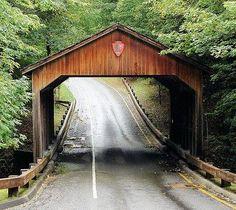 Pierce Stocking Covered Bridge - Michigan