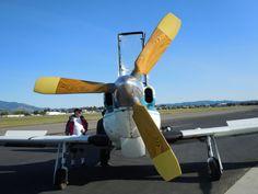 YO-3A-(61)