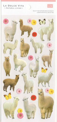 Japanese Sticker Sheet Assort: La Dolce Vita Series - Alpaca Photo Stickers