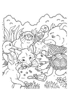 wildlife coloring pages # 4