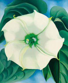 o'keeffe georgia jimson we | flowers & plants | sotheby's $44.5 million