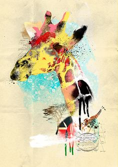 http://sanchezandre.tumblr.com/post/101930661553/wild-street-eagle-giraffe-bison-fox