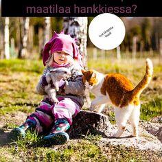 Photo And Video, Animals, Animales, Animaux, Animal Memes, Animal, Animais, Dieren