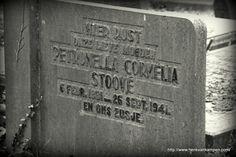 Grave of Petronella Cornelia Stoové, Old Public Cemetery, Zeist #genealogy