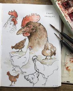 Doodlewash and watercolor sketch by E. O. Brown of roosters