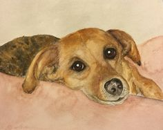 My son's dog - my first watercolor portrait! 2014