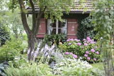Create Cottage Garden: Create perfect imperfection – Growing Vegetables - Growing Plants at Home Home Grown Vegetables, Growing Vegetables, Veggies, Concrete Patios, Garden Styles, Garden Planning, Amazing Gardens, Cottage Style, Houseplants